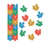 EB-Puzzle-pieces-illustration.jpg